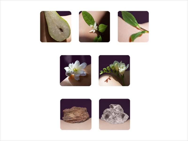 使用されている香料の画像