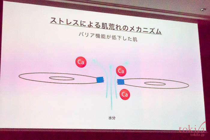 ディセンシアディセンシーエッセンス発表会スライド画像5