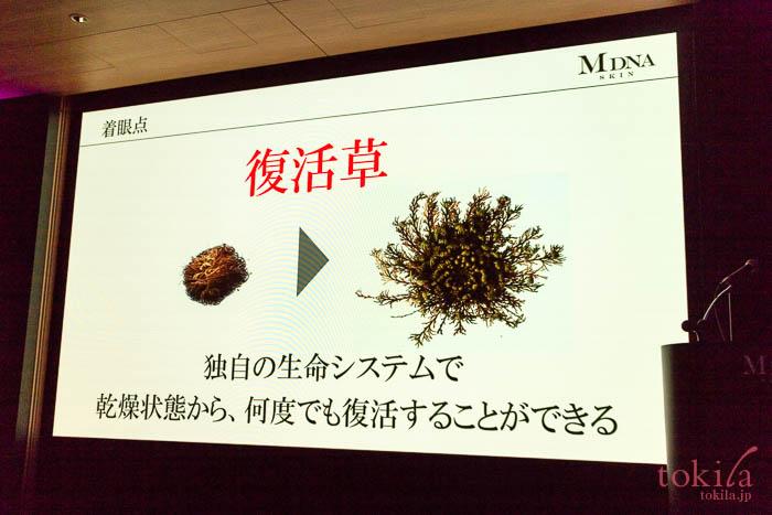 MDNA SKIN ザ リインベンションクリームに配合されている復活草