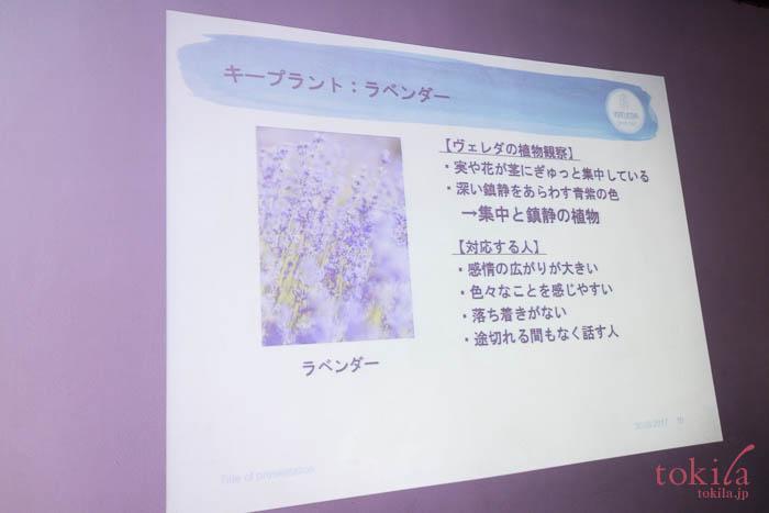 ヴェレダ ラベンダーナイトオイルのキープラントラベンダーのスライド画像