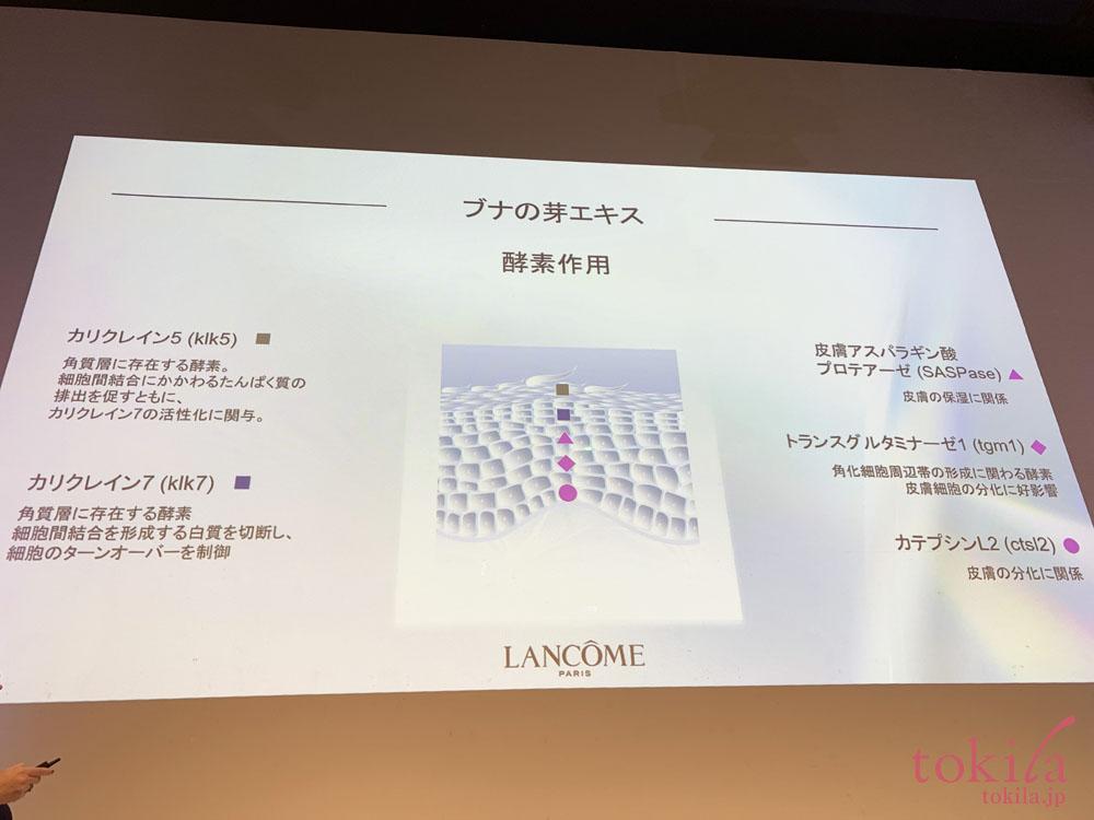 ランコム クラリフィック デュアルエッセンスローションに配合されているブナの芽についてのスライド画像