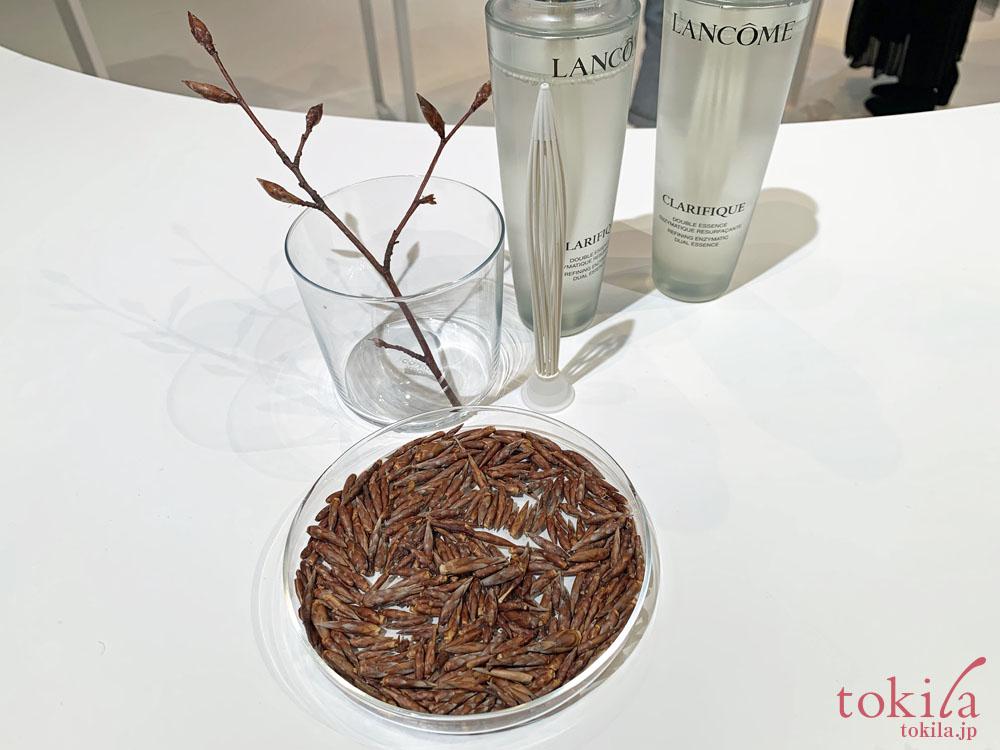 ランコム クラリフィック デュアルエッセンスローションに配合されているブナの芽